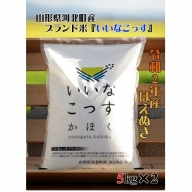 A-1232102【2021年2月発送分】山形県河北町産はえぬき10kg(5kg×2袋)【米comeかほく協同組合】