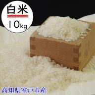 OO005令和2年産大岸の新米(白米)10kg