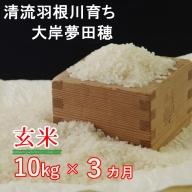 OO010令和2年産大岸の新米(玄米)10kg【3回定期便】