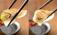 浜松発!いえやす自慢の浜松餃子 4種を楽しむバラエティーセット