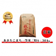 【特A一等米】 秋田県仙北市産米 令和元年産 あきたこまち(玄米 30kg)