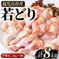 まつぼっくり  若どり手羽元8kg_matu-448