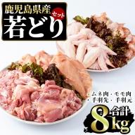 まつぼっくり  若どりムネ肉・モモ肉・手羽先・手羽元各2kgセット_matu-454