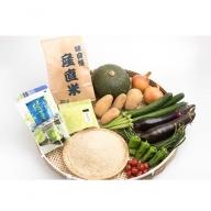 AA-141 枕崎産新米コシヒカリと枕崎茶 おばちゃんの手作り季節野菜