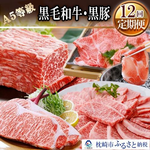 JJ-0015 定期便(12ケ月)A5等級鹿児島県産黒毛和牛&黒豚