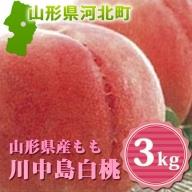 A-00320 山形県産もも(川中島白桃)3kg