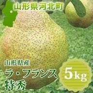 A-00920 山形県産ラ・フランス5kg(特秀)