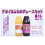 テルイさんちのジュースセット【りんごジュース&ぶどうジュース】