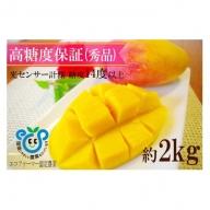 高糖度保証!農園ファイミールの高級マンゴーてぃらら(約2kg)3~5玉