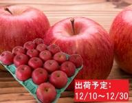 山形県産 贈答クラスサンふじ約5kg(秀・16~20玉)