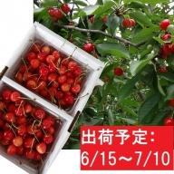 山形県産 佐藤錦1.2kg・バラ詰め秀M