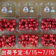 山形県産 さくらんぼ1.3kg(220g×6)秀M~L