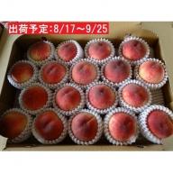 山形県産「白桃」約5kg・秀~優品16~20玉