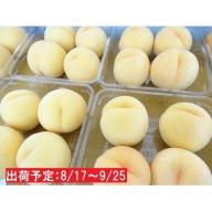 山形県産 「黄金桃」約5kg・秀~優品16~20玉