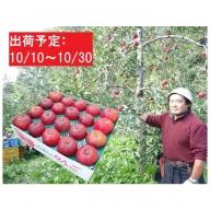 10月 大江の恵み 大玉紅玉約5kg(秀以上18~20玉程度)大江町産