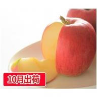 10月 訳ありシナノスイート約10kg(32~46玉)大江町産