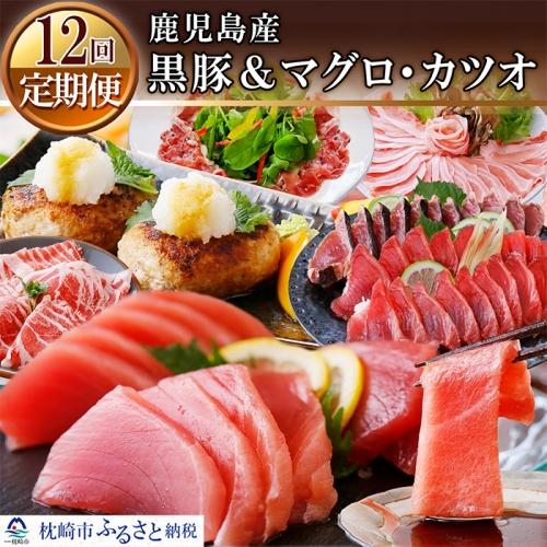 HH-0021 定期便(12ケ月)鹿児島県産黒豚&まぐろ・かつお