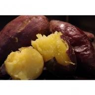 【D14011】鹿児島県産「特選紅蜜芋!紅はるか」焼き芋(冷凍)3kg【定期お届便】全5回