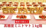SKファームの高糖度ミニトマト(約1kg)