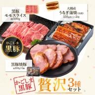 鹿児島県大隅産うなぎ2尾・黒豚モモスライス・黒豚焼豚2個セット