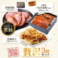 鹿児島県大隅産うなぎ2尾、黒豚焼豚2個・餃子セット