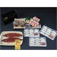 【B02059】鹿児島県大隅産うなぎ2尾、黒豚焼豚2個・餃子セット
