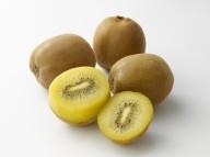【予約受付中!10月中旬頃から】香川県オリジナルキウイフルーツ『さぬきゴールド』約3kg【B-17】