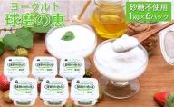 球磨の恵ヨーグルト 1kg×6パック(砂糖不使用)