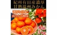 G6018_赤秀品 紀州有田産濃厚甘熟温州みかん 3kg