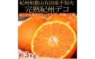 G6024_果肉プリプリ♪ 完熟紀州デコ(不知火) 約3kg