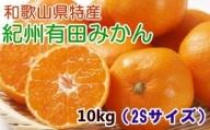 ZD6044_[厳選・産直]紀州有田みかん10kg(2Sサイズ)