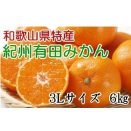 ZD6102_【厳選】紀州有田みかん 6kg(3Lサイズ・赤秀)【数量限定】