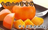 ZD6148_[甘柿の王様]和歌山産富有柿 約3.5kgサイズ混合