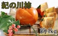 ZD6159_【希少】紀の川柿 約4kg(種無し・黒あま柿)秀選品