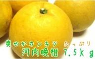 AB6059_有田育ちの河内晩柑 7.5kg