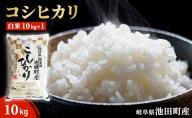 池田町産 コシヒカリ白米10kg