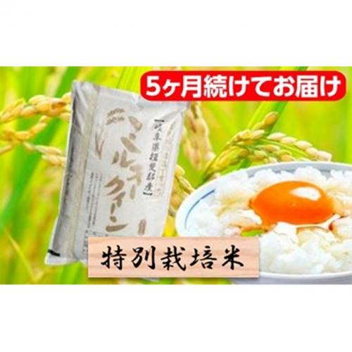 特別栽培米★[定期便] 5カ月★毎月 精米10kg または玄米11kg【ミルキークイーン】