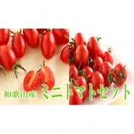 ミニトマトセット【 キャロルセブン・アイコ】 2kg 和歌山産