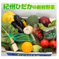紀州の野菜・果物セット(15~20品目詰め合わせ)