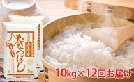 北海道赤平産 ななつぼし10kg×12回お届け