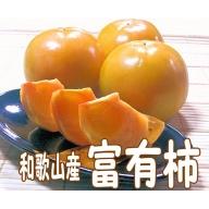 富有柿5kg(柿の生産量日本一の和歌山県から)