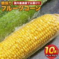 日本最速級出荷のトウモロコシ朝採りフルーツコーン10本入り3L-Lサイズ《6月中旬-7月中旬頃より順次出荷》【クール便】熊本県産(御船町含む) フルーツコーン とうもろこし