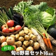 旬の新鮮野菜たっぷり16品セット 《30日以内に順次出荷(土日祝除く)》 ★御船町産を中心とした旬の野菜セット 冷蔵 詰め合わせ 季節の野菜 安心・安全の野菜セット