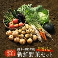 安心・安全の熊本県御船町産 厳選8品目 安心・安全の新鮮野菜セット 《30日以内に順次出荷(土日祝除く)》