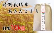 【特別栽培米 炭壌米 あきたこまち】令和2年産 白米 10kg 『先行予約』