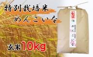 【特別栽培米 炭壌米 めんこいな】令和2年産 玄米 10kg 『先行予約』