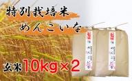【特別栽培米 炭壌米 めんこいな】令和2年産 玄米 10kg×2袋(合計:20kg) 『先行予約』