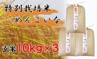 【特別栽培米 炭壌米 めんこいな】令和2年産 玄米 10kg×3袋(合計:30kg) 『先行予約』
