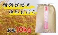 【特別栽培米 炭壌米 ゆめおばこ】令和2年産 玄米 10kg 『先行予約』