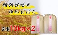 【特別栽培米 炭壌米 ゆめおばこ】令和2年産 玄米 10kg×2袋(合計:20kg) 『先行予約』